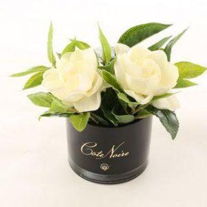 Côte Noire Perfumed Gardenias Black Base