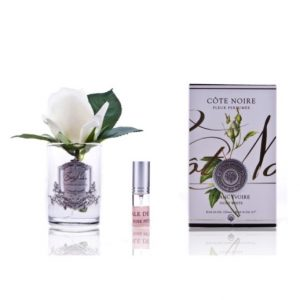 Côte Noire French Rose Bud Ivory White Clear Glass