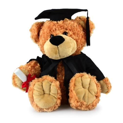 Buddy Graduation Bear Small