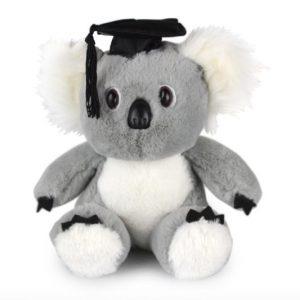 Academic Koala Bear