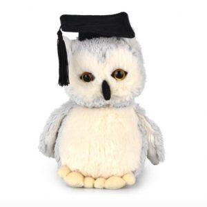Academic Owl