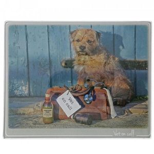 Kitchy & Co Vet On Call Trivet Small